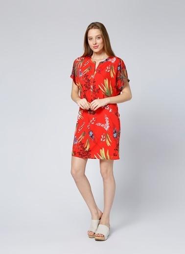 House Of Camellia Çiçekli Kısa Elbise Renkli